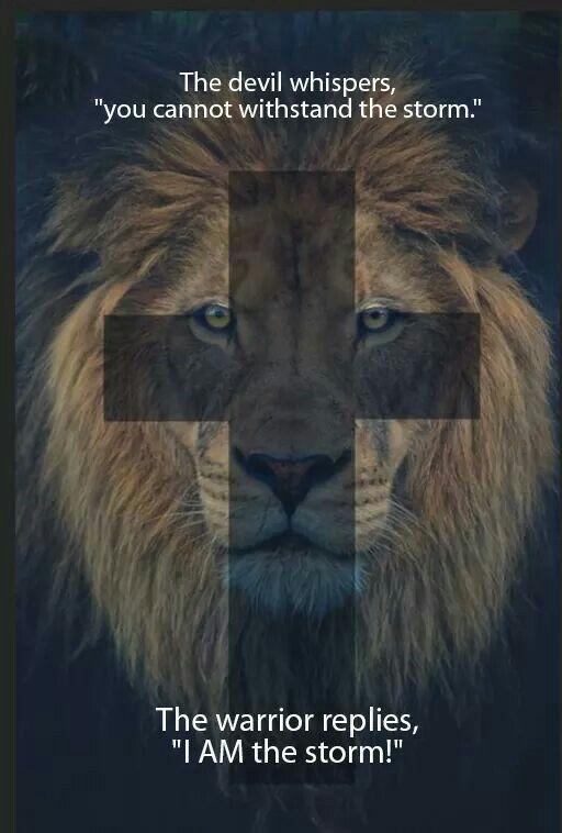 Lion Storm